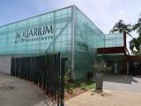 Aquarium de Guadeloupe