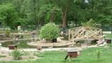 Envol Sauvage, parc animalier AUMALE